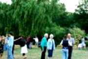 "Link to Facebook album ""Forget Me Not Farms Annual Farm Dance - August 30, 2009"""
