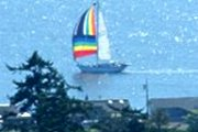 "Link to Facebook album ""Sunny Spinaker Sails Past - 8/20/11"""