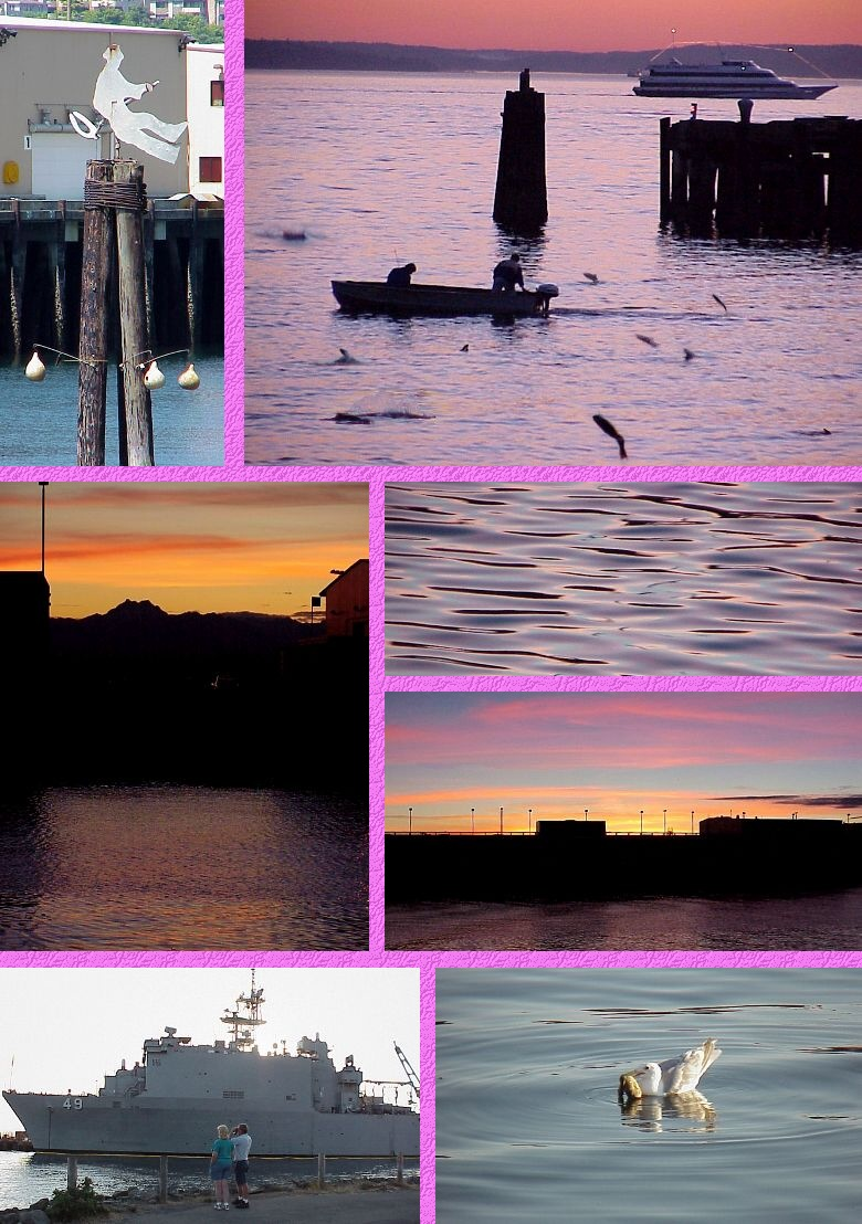 Seattle's Pier 89 Sights - Salmon and Sunsets